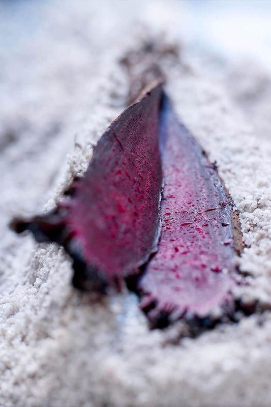 Rote Beete auf Salzkruste