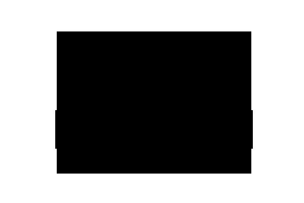 Borgmann Spirituosen