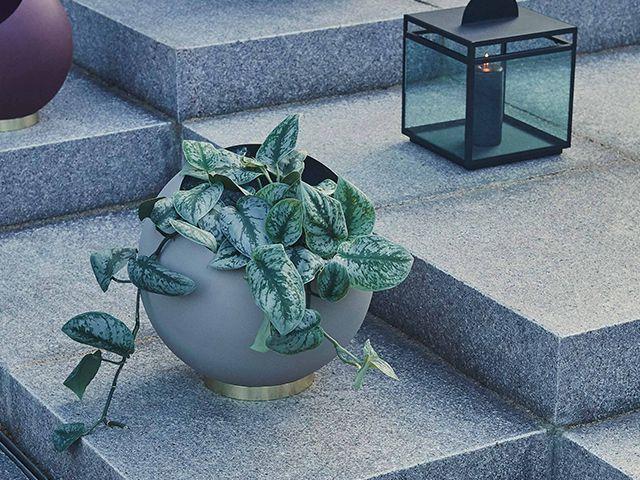 Globe Plant Pot AYTM