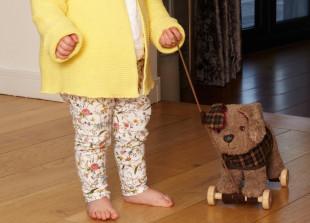 Percy Pup Nachziehspielzeug